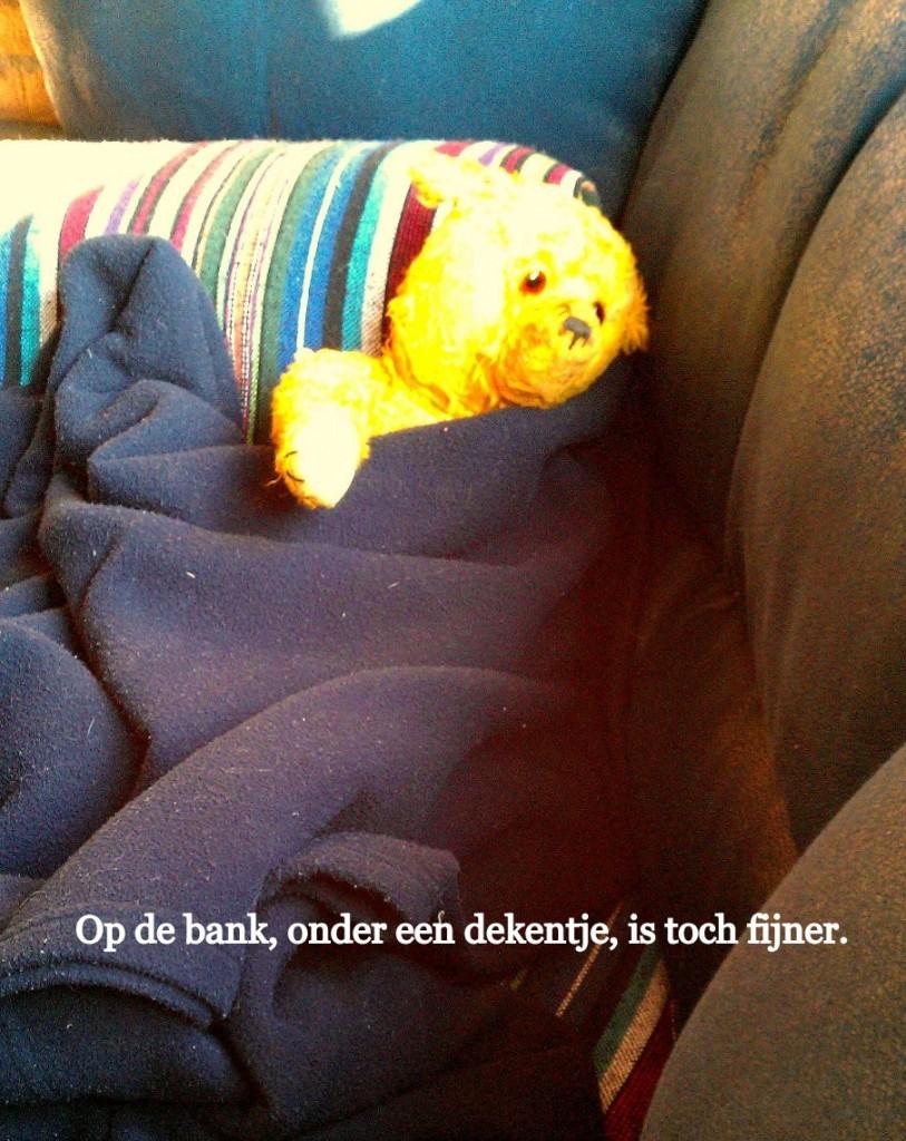 Op de bank, onder een dekentje, is toch fijner.